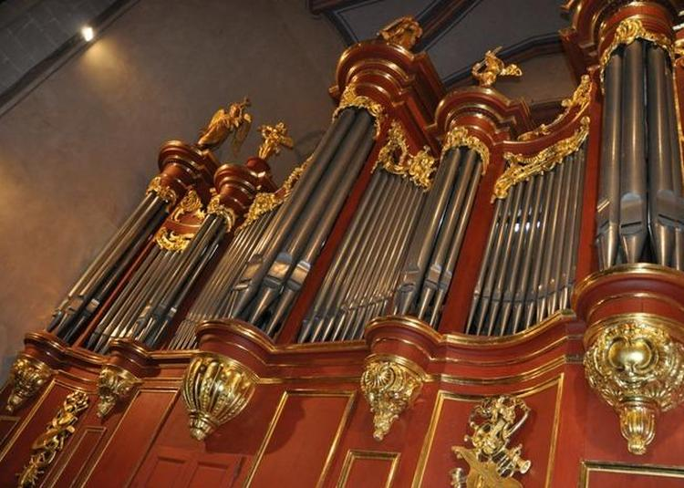 Visite Guidée : Découverte De L'orgue à Carcassonne