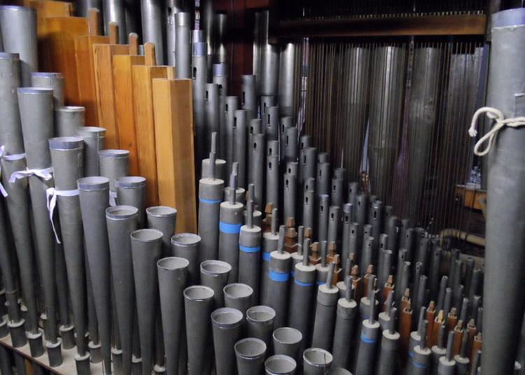Visite Guidée Découverte De L'orgue à Castanet Tolosan