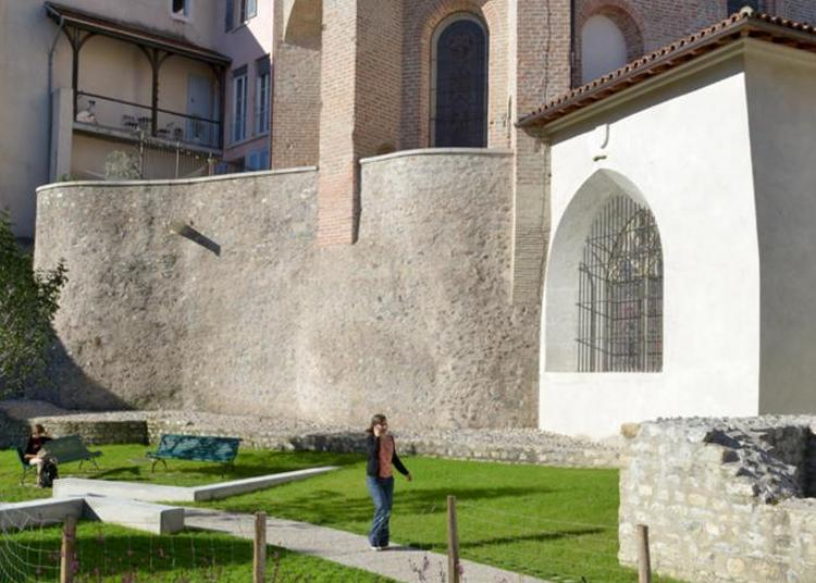 Visite Guidée Découverte Du Jardin Du Musée : Des Vestiges Archéologiques Aux Essences Végétales à Grenoble
