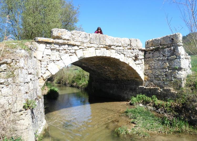 Visite Guidée Découverte Du Patrimoine De Cazillac Sur Barguelonne à Cazes Mondenard