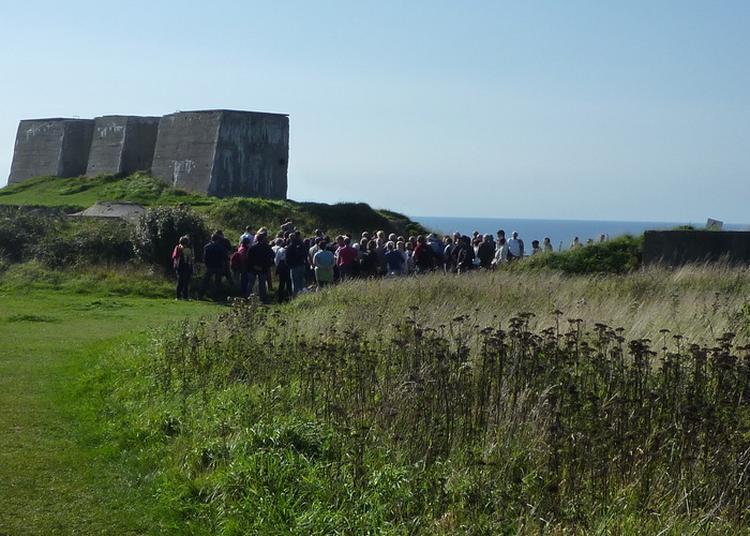 Visite Guidée Des Blockhaus Du Mur De L'atlantique à Fecamp