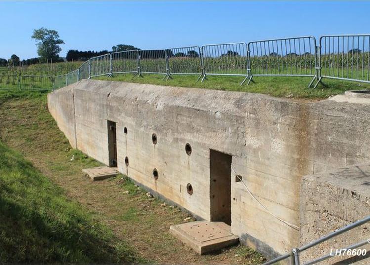 Visite Guidée Des Blockhaus Montrottins - Point Fort Communication Et Surveillance à Fontaine la Mallet