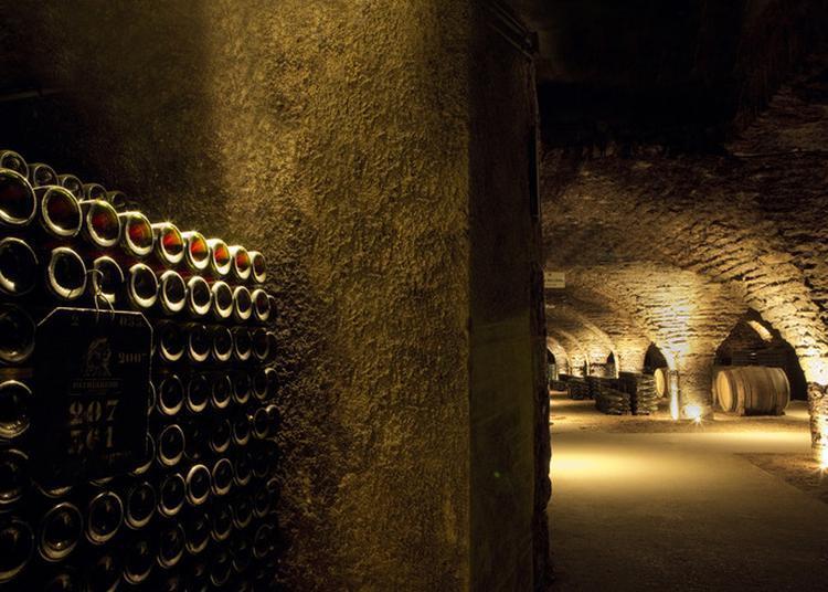 Visite Guidée Des Caves Et Dégustation à Beaune