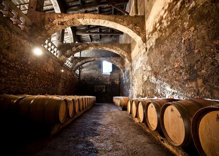 Visite Guidée Des Caves Souterraines Du Château Du Taillan à Le Taillan Medoc