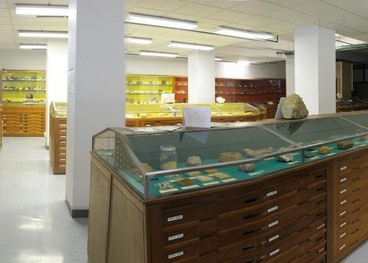 Visite Guidée Des Collections De Géologie De L'université Caen Normandie Avec Leur Responsable