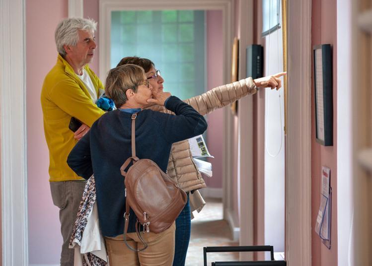 Visite Guidée Des Collections Du Musée à Meudon