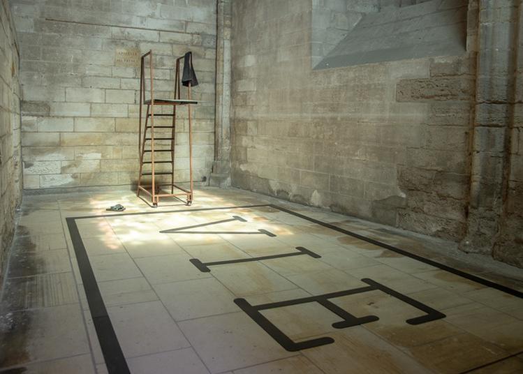 Visite Guidée Des Expositions D'art Contemporain à Villeneuve les Avignon