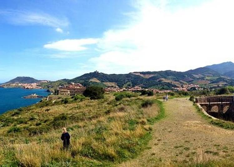 Visite Guidée Des Forts à Collioure