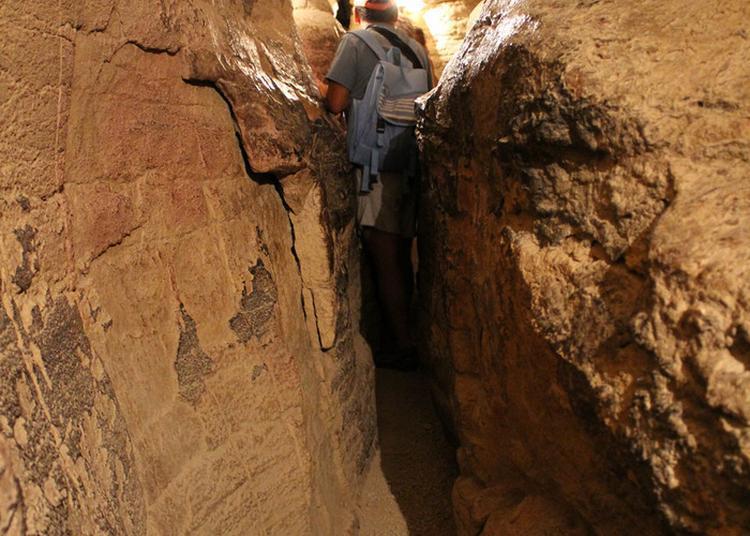 Visite Guidée Des Grottes De La Balme. à La Balme les Grottes