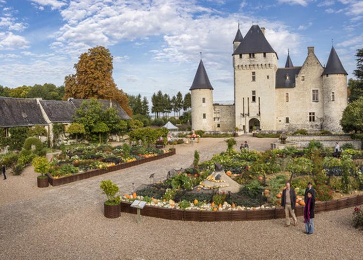 Visite Guidée Des Jardins Et Du Château à Lemere
