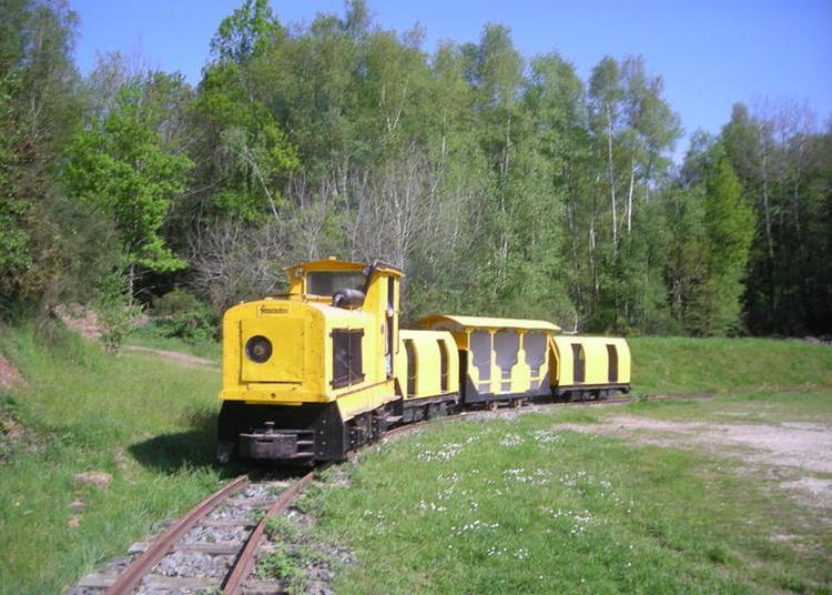 Visite Guidée Des Mines De La Brutz à Teillay