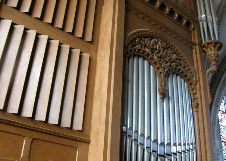 Visite Guidée Des Orgues Et Du Carillon De L'église à La Ferté Macé