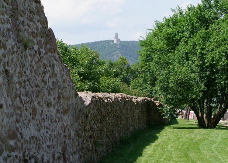 Visite Guidée Des Remparts De Châtenois à Chatenois