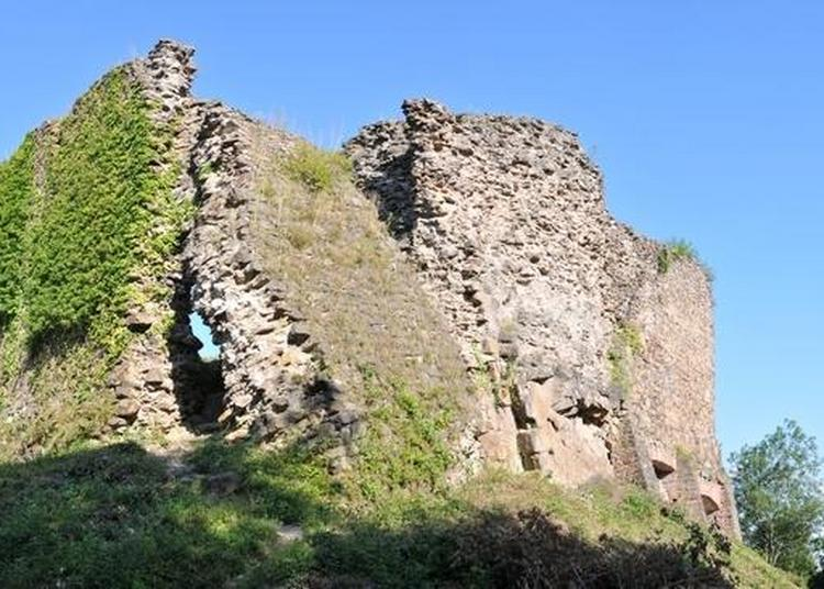 Visite Guidée Des Ruines D'un Château Fort Du XIIIe Siècle à Buhl