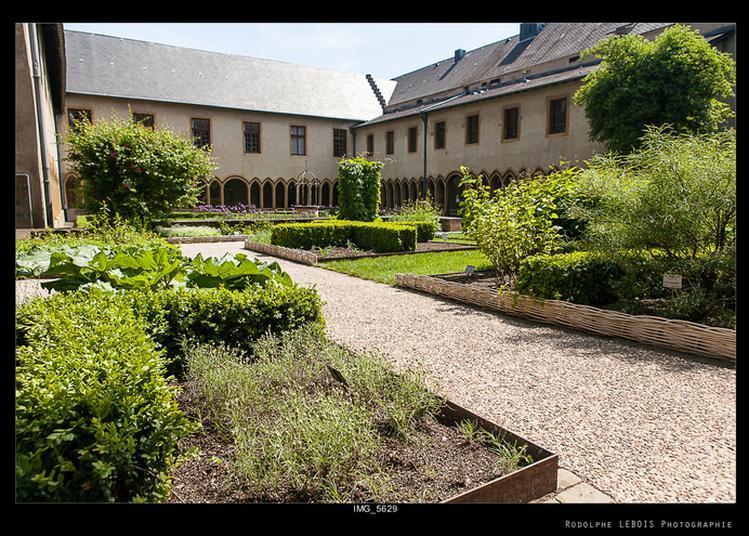 Visite Guidée Du Bureau Et De La Bibliothèque De Jean-marie Pelt Et De La Salle Du Club à Metz