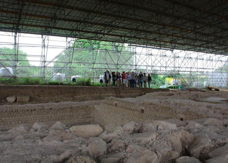 Visite Guidée Du Chantier De Fouilles Du Forum Antique à Vieux