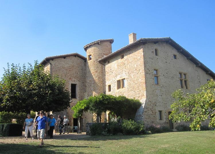 Visite Guidée Du Château à Blace