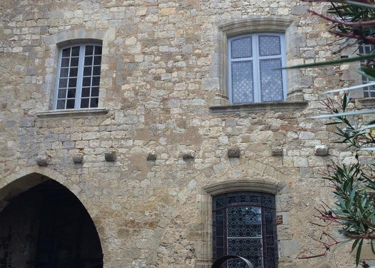 Visite Guidée Du Château à Montaut les Creneaux