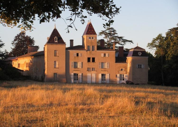 Visite Guidée Du Château à Chasselay