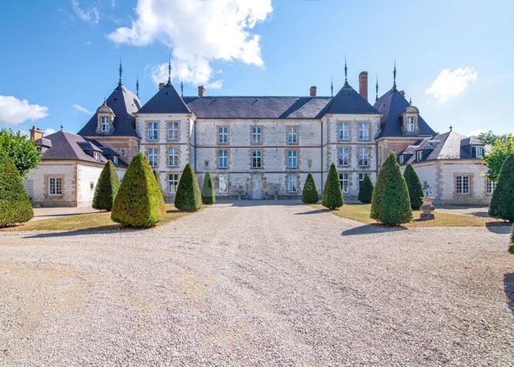 Visite Guidée Du Château Avec Le Propriétaire à Vitry la Ville