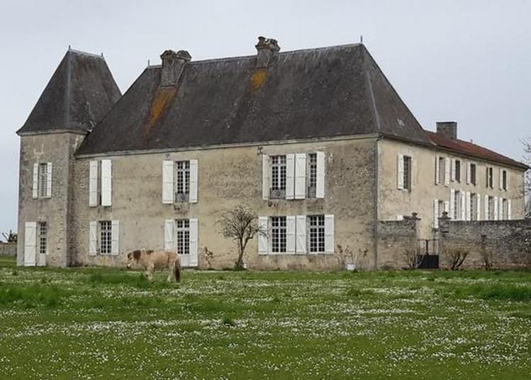 Visite Guidée Du Château De Balzac