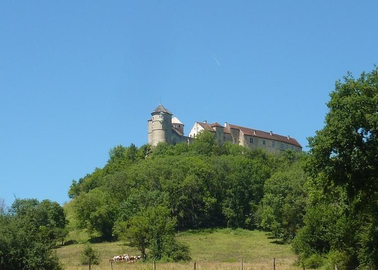 Visite Guidée Du Château De Belvoir