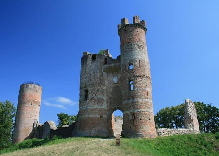 Visite Guidée Du Château De Bressieux