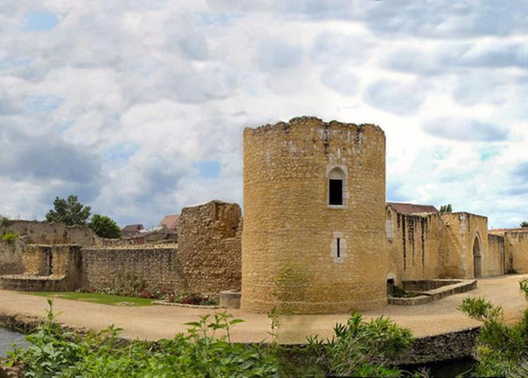 Visite Guidée Du Château De Brie-comte-robert à Brie Comte Robert
