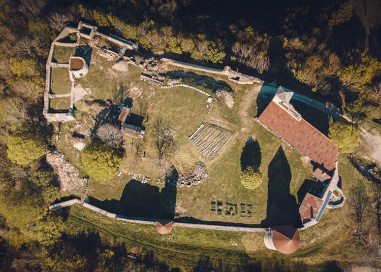 Visite Guidée Du Château De Chevreaux