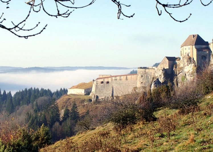 Visite Guidée Du Château De Joux à La Cluse et Mijoux