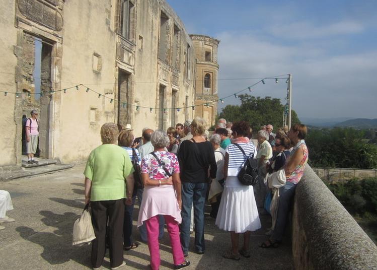 Visite Guidée Du Château De La Tour D'aigues Et Des Anciens Jardins à La Tour d'Aigues