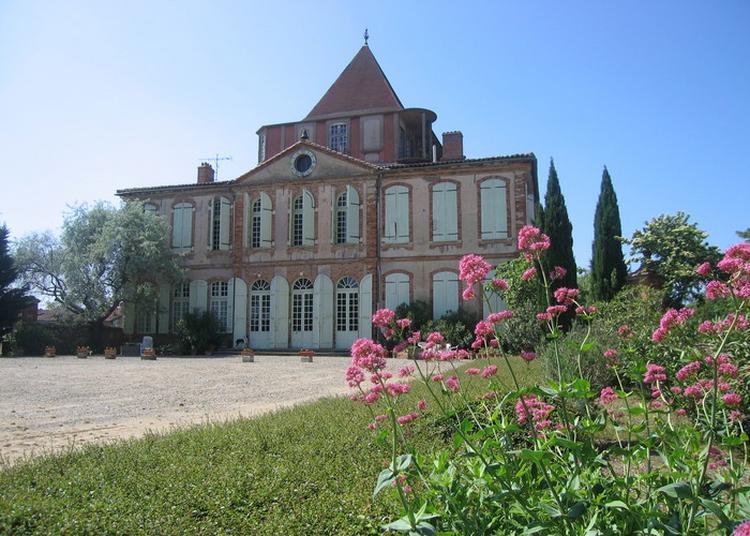Visite Guidée Du Château De Larra