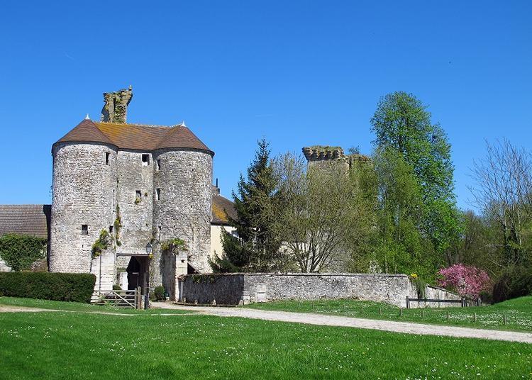 Visite guidée du château de Montepilloy