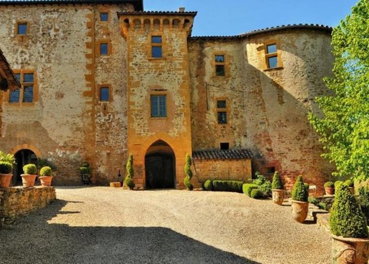 Visite Guidée Du Château De Rapetour à Theize