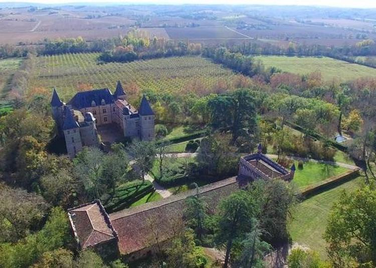 Visite Guidée Du Château Et De Son Parc à Cazaux Saves