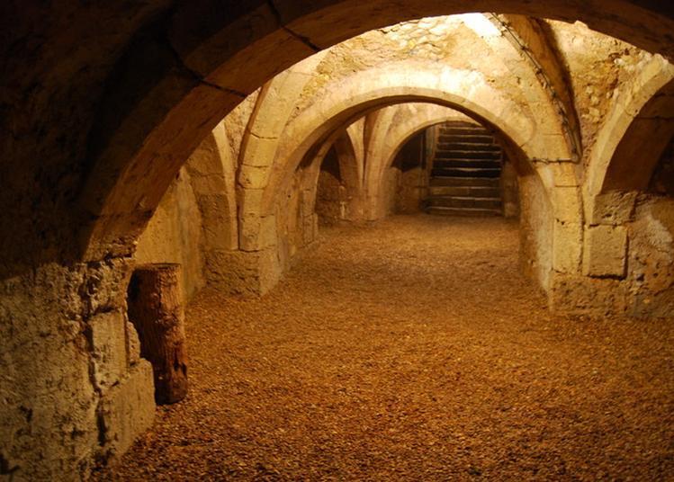 Visite Guidée Du Château Médiéval Et Son Site à Chateau Renault