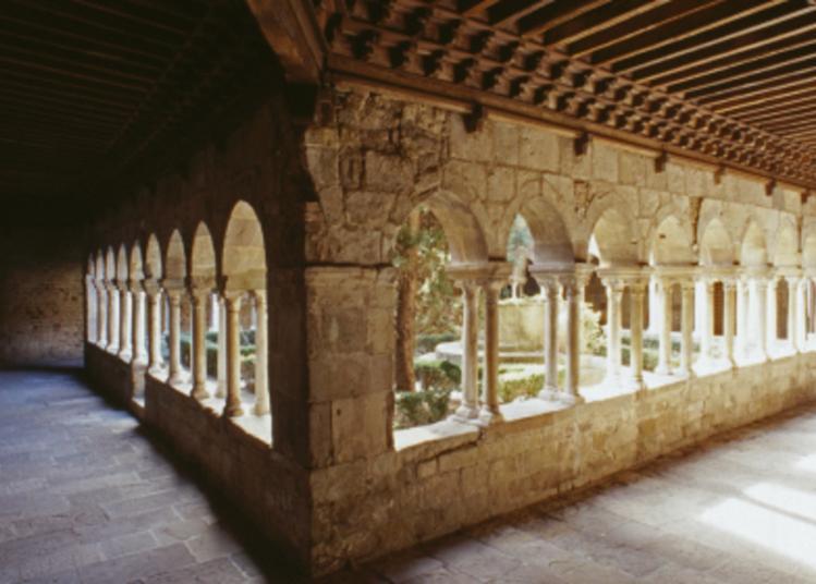 Visite Guidée Du Cloître De La Cathédrale à Frejus