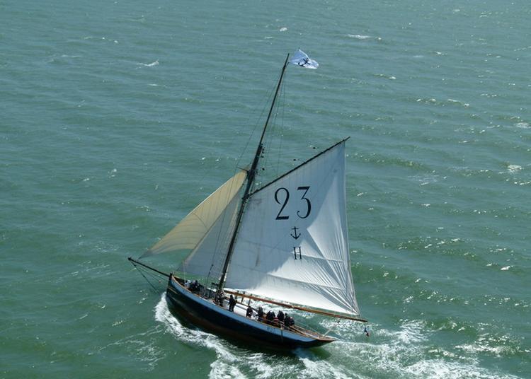 Visite Guidée Du Cotre Pilote Marie-fernand à Le Havre