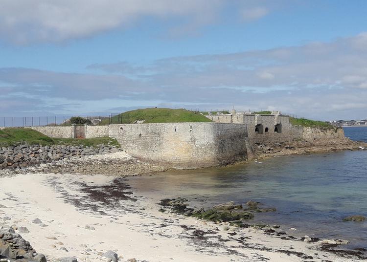Visite Guidée Du Fort De Porh Puns à Plouhinec