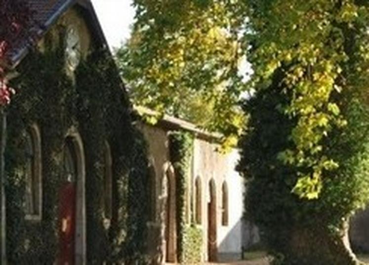 Visite Guidée Du Haras National De Rosières-aux-salines à Rosieres aux Salines