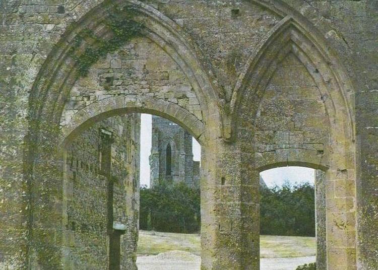 Visite Guidée Du Jardin Fortifié De L'abbaye Saint-étienne à Le Plessis Grimoult