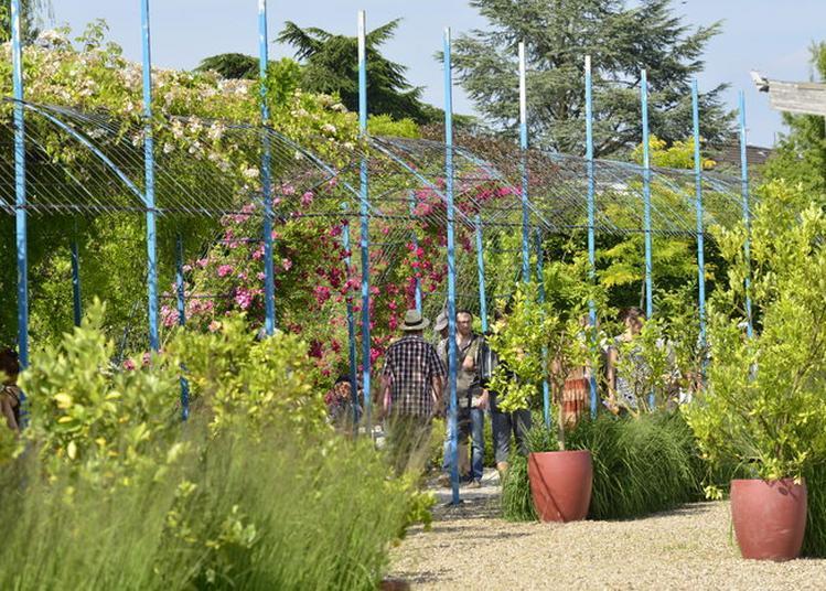 Visite Guidée Du Jardins Fruitiers à Laquenexy