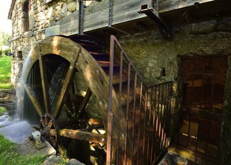 Visite Guidée Du Moulin De Masméjean à Saint Etienne de Lugdares