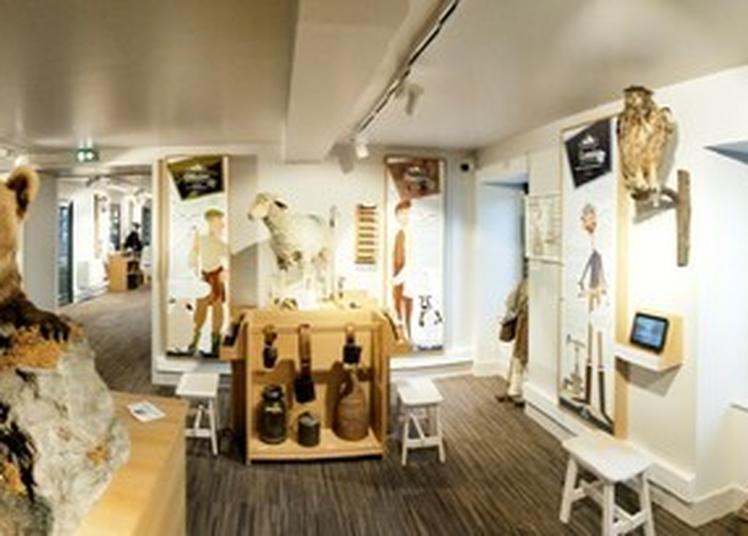 Visite Guidée Du Musée à Saint Lary Soulan