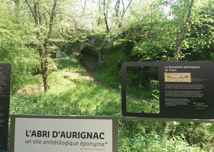 Visite Guidée Du Musée à L'abri Préhistorique à Aurignac