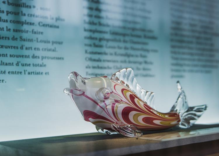 Visite Guidée Du Musée : à La Découverte Des Pièces Les Plus Insolites ! à Saint Louis les Bitche