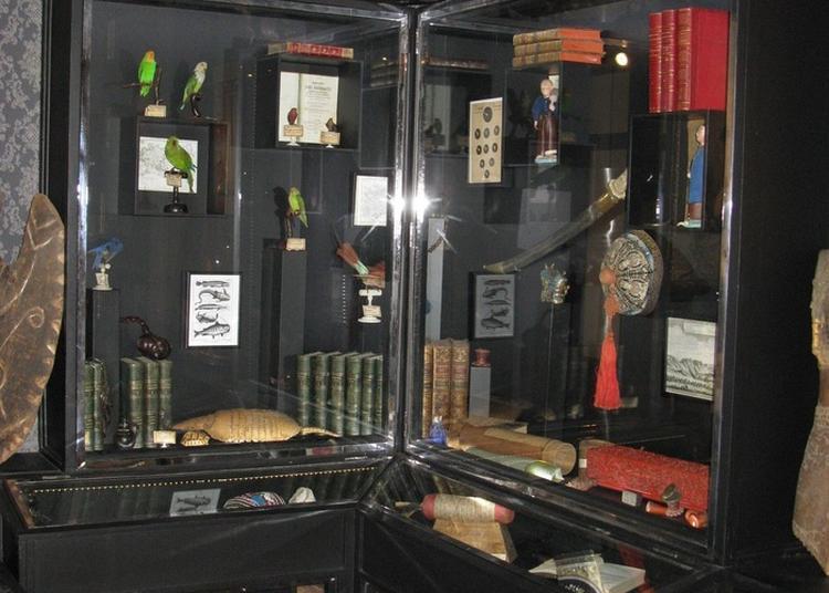 Visite Guidée Du Musée Bibliothèque Et Du Fonds Ancien à Saint Calais