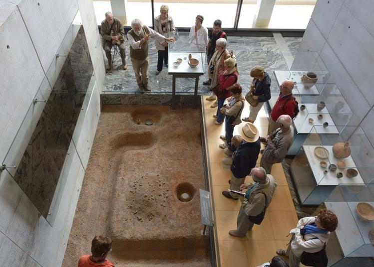 Visite Guidée Du Musée De Bibracte à Saint Leger Sous Beuvray