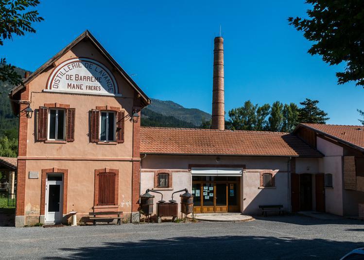 Visite Guidée Du Musée De La Distillerie à Barreme
