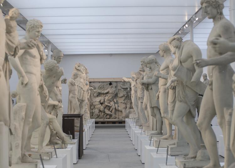 Visite Guidée Du Musée Des Moulages De L'université Lumière Lyon 2: Une Collection Au Service De L'éducation